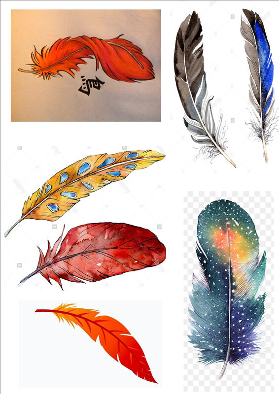 plumes 1