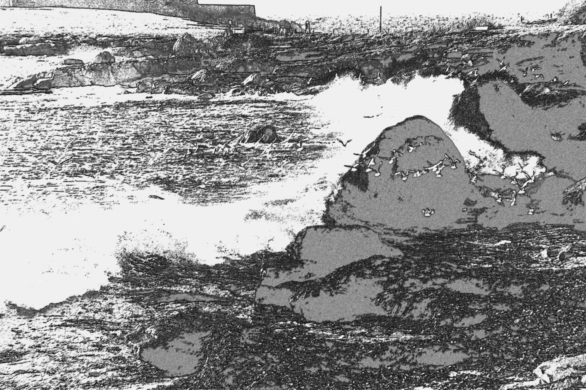Ces 8 marées noires qui ont souillé la Bretagne (photo JCS) - Ma colère est toujours aussi rouge !