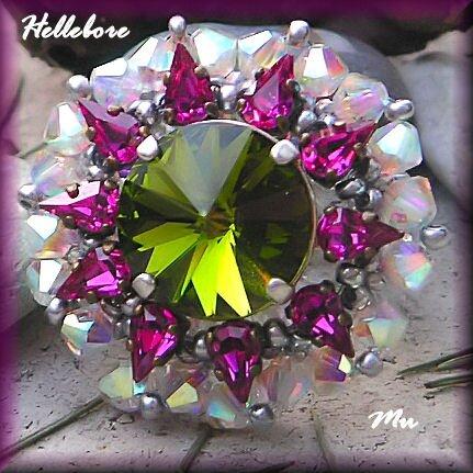 Hellebore12