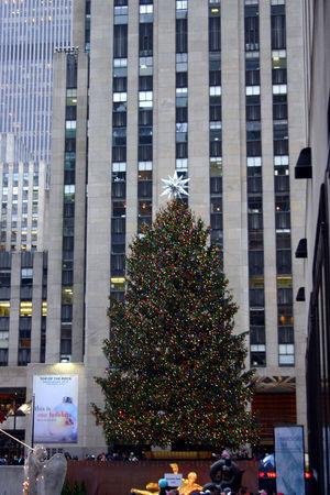 NYC_23_12_08_25