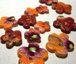 boutons_fleurs