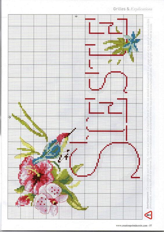 ibiscus5
