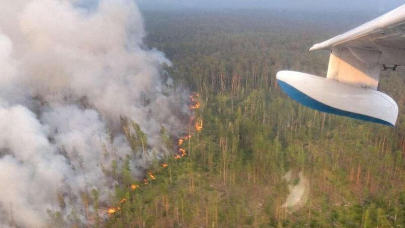 feux de forêts géants 9