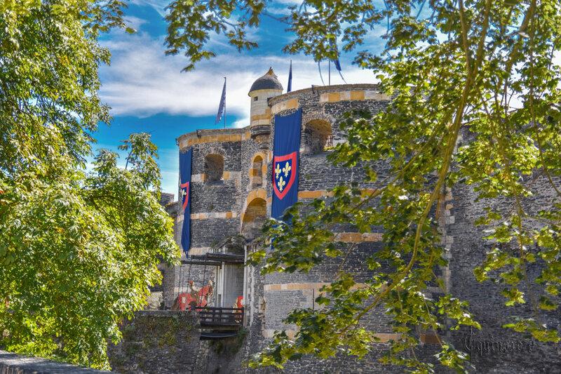 Notes sur le château d'Angers René I d'Anjou, Traité de la forme et devis comme on peut faire les tournois