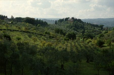 0910_AGNES_Florence_Ultra400_18__800x600_