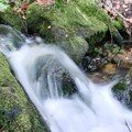 2008 04 20 L'eau qui coule sur les pierres
