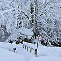 Vélo au placard, ski dans les starts