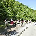 balade à cheval médiévale - Abbaye de Hambye (38)