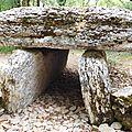 dolmen du bois Galtier près [800x600]
