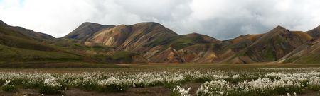 Panorama_Landmanalaugar_prairie_coton