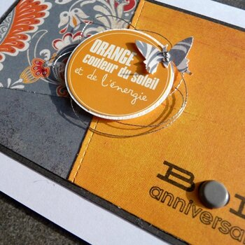 papillon_orange_detail