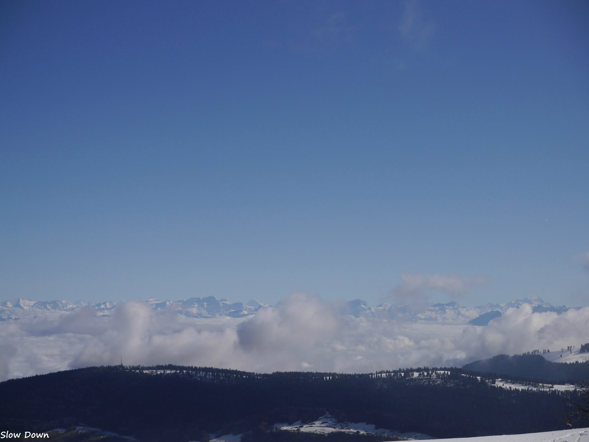 Les Alpes vues du Jura