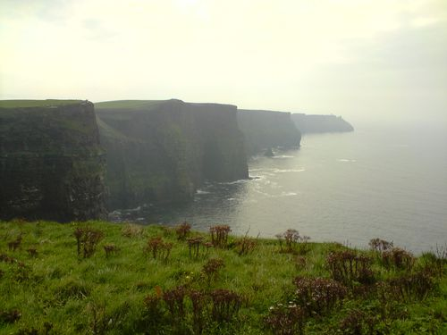 Cliff of Moher, 215m de haut...
