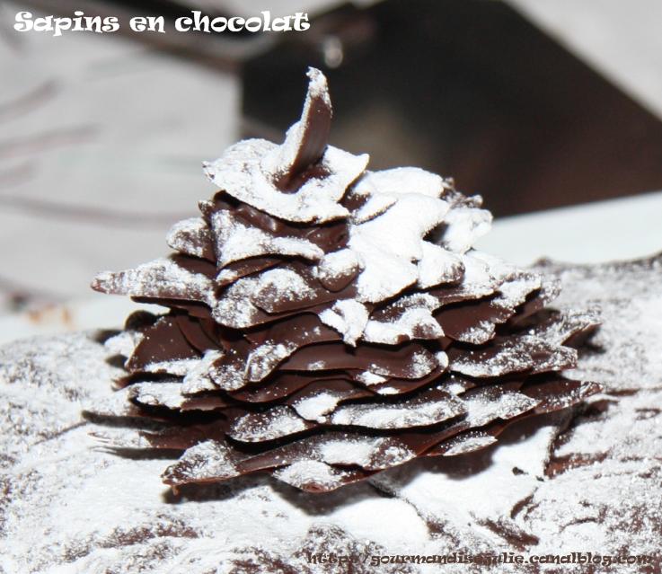 Decor en chocolat pour buche de noel