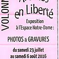 Prochainement : exposition de photos et gravures et marché nocturne à volonne à ne pas râter.