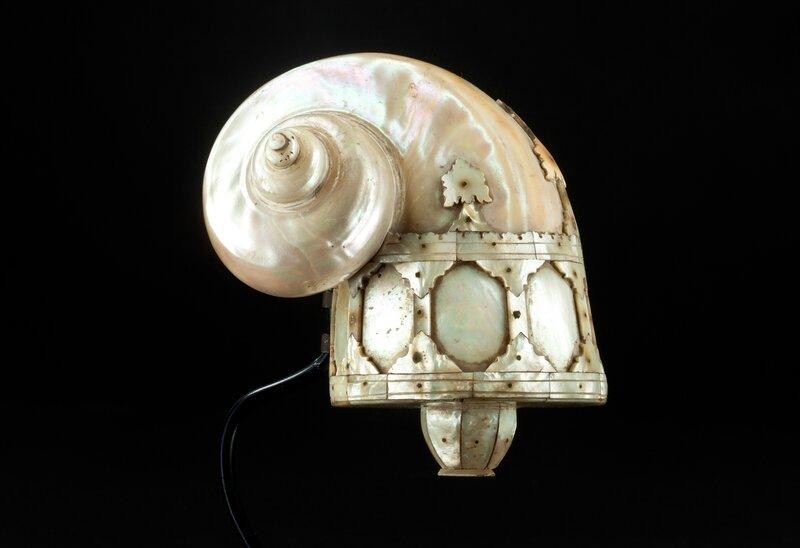 nautilus_shell_small