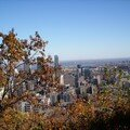 Mont royal 21oct 053