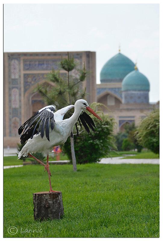 Ouzbekistan_059
