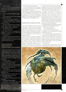 La Mystérieuse aventure de Maître Sulfur 04