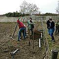 2-Le travail à la vigne en 2002