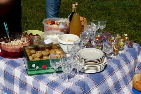 picnic_sal__1