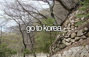 Go to Korea