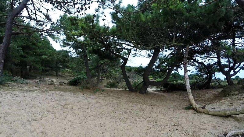 TCO 2015 _ 30 _ les Dunes de la Slack _ 3