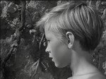 5_ivans_childhood_dvd_review_andrei_tarkovsky