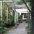 Maison de thé japonaise le mini jardin