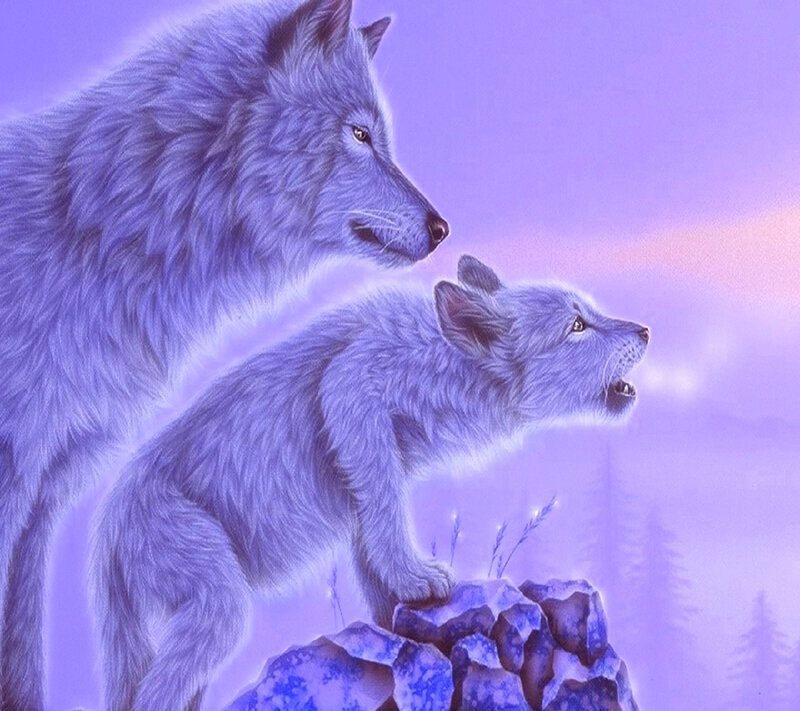 Beautiful___Wolfs-wallpaper-10823905