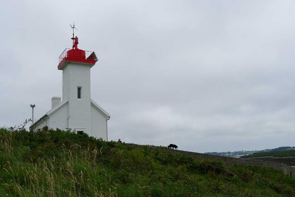 phare de l'ile Wrac'h