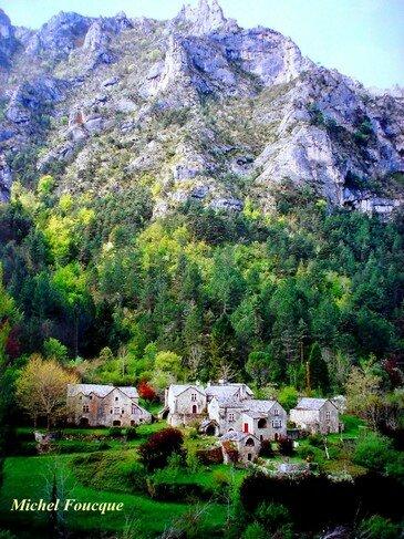 880) Gorges du Tarn