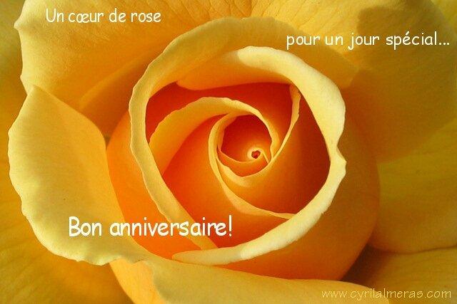 carte_anniversaire_coeur_de_rose
