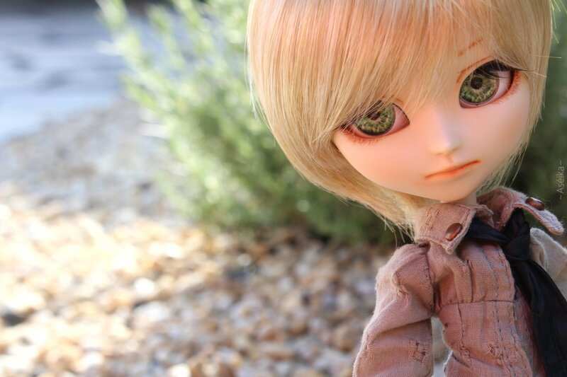 ~ Lavender ~