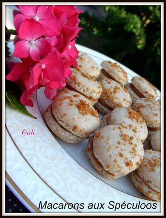 Macarons_aux_Sp_culoos____039
