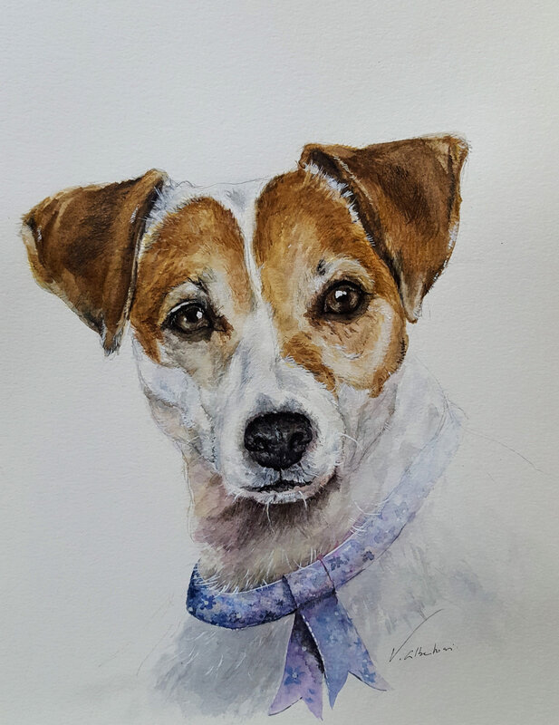 portrait chien aquarelle Jack Russell watercolor dog portrait valerie albertosi