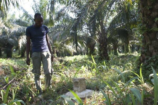 L'accaparement des terres au Congo pour produire de l'huile de palme (par Élisa)