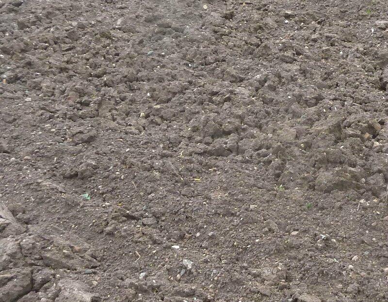 3-terre mouillée