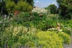 Lieve s garden 01