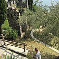 Démonstration de fauconnerie au château de Vezio