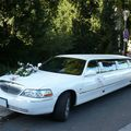 Lincoln town car royale limousine