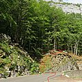 IMG_0064a