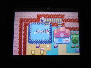 ben_c_est_sa_la_pokemon_004