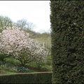 44_Valloires au printemps