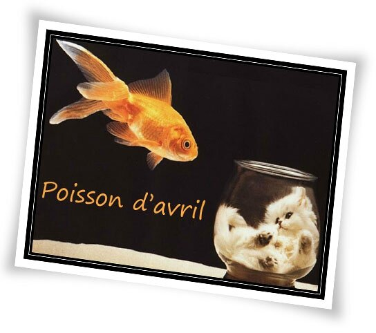 poisson-chat-avril