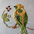 Oiseau capucine