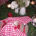 table picnic 020