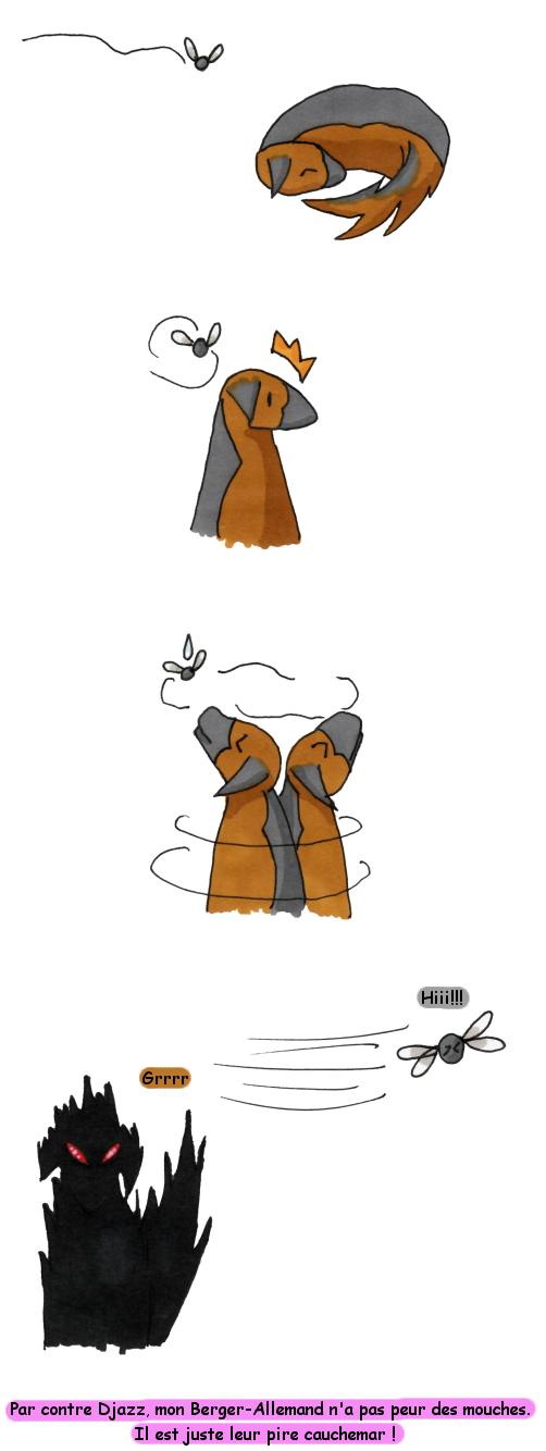 djazzmouche