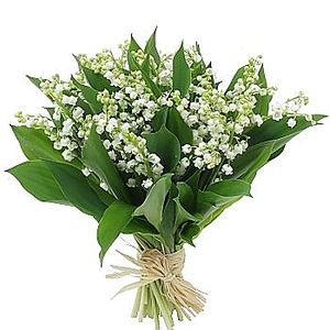 Bouquet_de_muguet