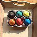 Boîte à œufs pour tris de couleurs